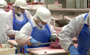 Arbeitnehmer im Schlachthof